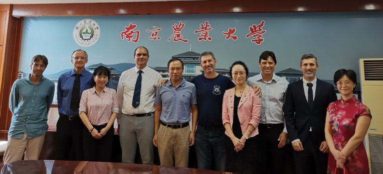UFV China